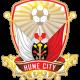Prediksi Skor Bulleen Lions vs Hume City 24 Juni 2017