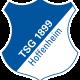 Prediksi Skor TSG Hoffenheim vs SV Darmstadt 98 18 Februari 2017